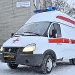 В Кольцово курсирует «свиной грипп» А/H1N1—2009