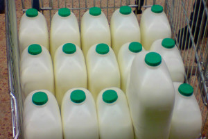 Поставщики молочной продукции не подали заявок на аукцион