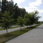 Молодые врачи стремятся приобрести квартиру в Кольцово