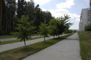 Городские врачи готовы переехать в Кольцово.