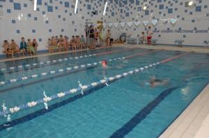Соревнования по брассу прошли в бассейне лицея № 21.