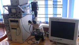 Электрооптическая система исследования клеток.
