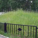 Клещи и некошеные газоны в Кольцово: есть ли связь?
