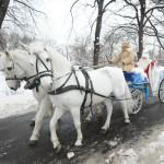 Дед Мороз открывает представительство в Кольцово