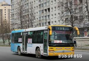 На маршруте появились новые китайские автобусы.
