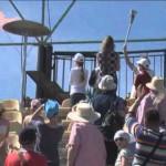 Видео. IV Культурная олимпиада Новосибирской области