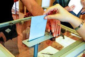 Процесс голосования в Кольцово будет сопровождать культурная программа и медуслуги.
