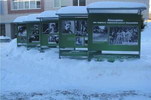 Выставка в Кольцово, 29 января.