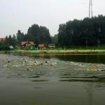Вода на пляже Кольцово соответствует всем нормативам