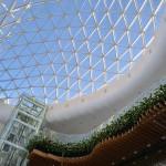 В Кольцово обсудили будущее биотехнологической отрасли