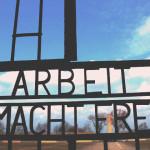 В Кольцово начали «организацию» выплат Бундестага