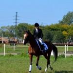 Кольцовчанка заняла третье место на конном турнире в Новосибирске