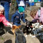 Общество инвалидов Кольцово сотрудничает с базой реабилитации животных