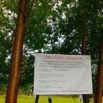Один из дворов в Кольцово благоустраивают по муниципальной программе