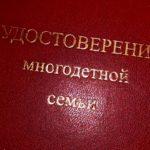 Многодетные семьи Кольцово получат скидку на оплату детского сада