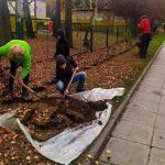 ТОС «Микрорайон II» в Кольцово провело озеленение территории