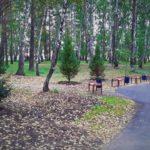 Елки, кедры и липы высадили в Кольцово рядом с УФОКом